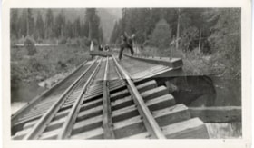 Slanted track from Grand Trunk Pacific Railway trainwreck (descriptions1636)