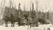 Unidentified man hauling railroad ties (descriptions1906)