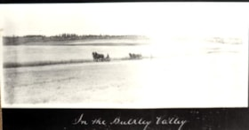 """In the Bulkley Valley"" (descriptions3144)"