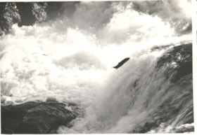 """Salmon jumping falls at Moricetown"" (descriptions3723)"