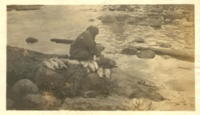Indigenous woman cleaning salmon at Moricetown Canyon (descriptions3849)