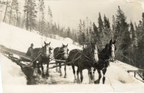 Al Bannister with pull horses on the switchbacks to Duthie … (descriptions6927)