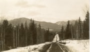 Dirt road in the Bulkley Valley facing the Babine mountains (descriptions6928)