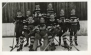 The Blue Birds hockey team (descriptions7998)