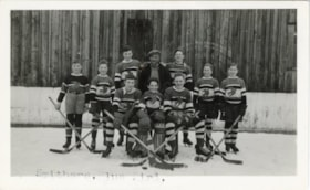 The Blue Birds hockey team (descriptions8000)