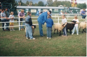 4H children with sheep at Fall Fair (2) (descriptions9174)