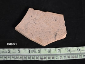 Fossil (artifacts3763)