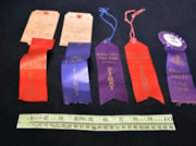 Prize Ribbon (artifacts4285)
