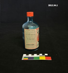 Bottle (artifacts2759)