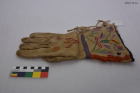 Gloves (artifacts2869)