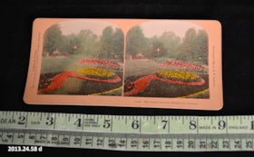 Stereoscope (artifacts3081)