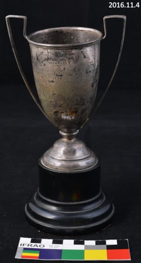 Trophy, Sports (artifacts3581)
