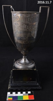 Trophy, Sports (artifacts3584)